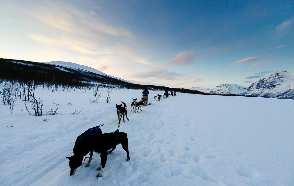 Tromsø: Wie ich die Reise geplant habe