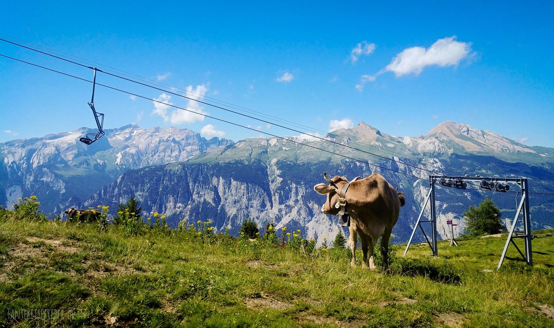 Wanderung: Vom Brambrüesch zum Dreibündenstein im Kanton Graubünden in der Schweiz