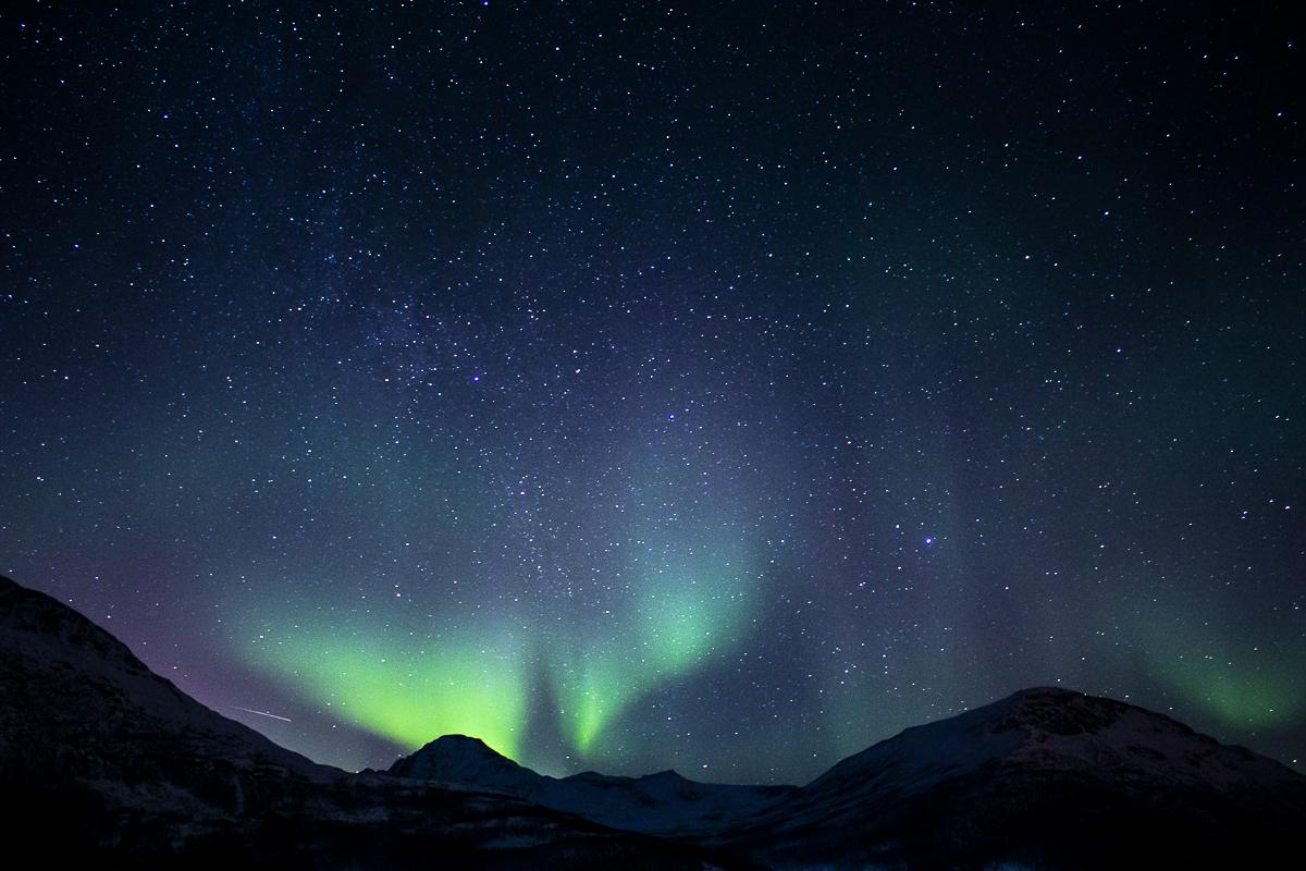 Tromsö: Einmal Polarlichter, Wale, Schlittenhunde – Reisebericht